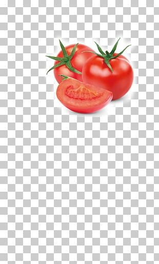 Tomato Vegetable Fruit Auglis Food PNG