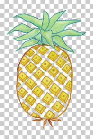 Pineapple Animation Collage PNG