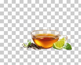 Earl Grey Tea Green Tea Mate Cocido Assam Tea PNG