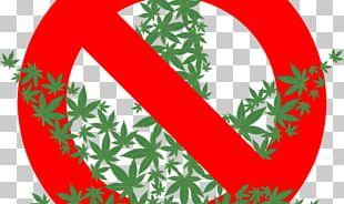 Cannabis Sativa Hemp Cannabidiol Medical Cannabis PNG