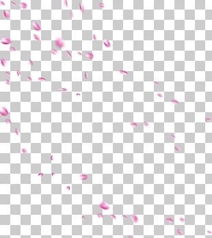 Beach Rose Petal Drop Flower PNG