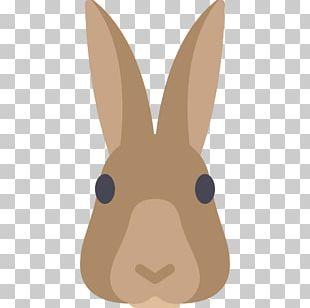 European Rabbit Domestic Rabbit European Hare Easter Bunny PNG