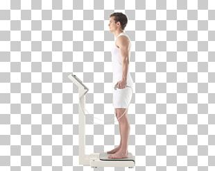 Human Body Composition Human Body Composition Bioelectrical Impedance Analysis Body Water PNG