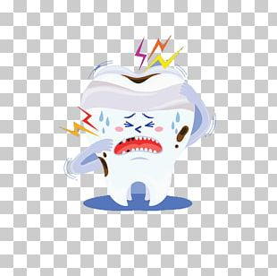 Wisdom Tooth PNG