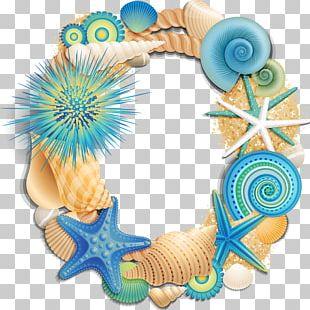 Beach Letter Alphabet Initial Seashell PNG