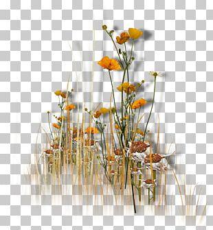 Flower Garden Floral Design PNG