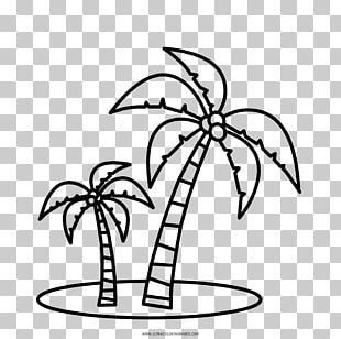 Coloring Book Arecaceae Drawing Child Number PNG