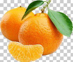 Juice Mandarin Orange Tangerine Chenpi Clementine PNG