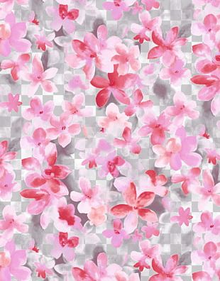 Flower Floral Design High-definition Video High-definition Television PNG