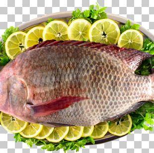 Kipper Tilapia Bengali Cuisine Fish Slice PNG