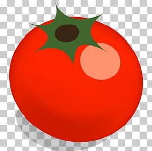 Tomato Plant Apple Food Fruit PNG