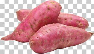 Sweet Potato Organic Food Health PNG