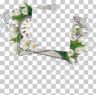 Floral Design Frames Photography Author Cut Flowers PNG