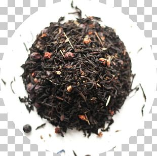Darjeeling Tea Green Tea Assam Tea Nilgiri Tea PNG