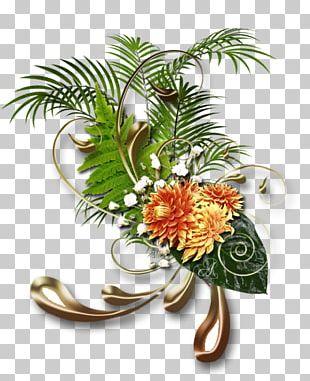 Floral Design Flower Frames Painting PNG