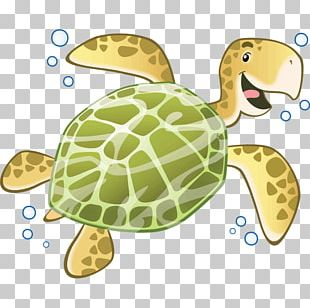 Sea Turtle Reptile Tortoise Sticker PNG