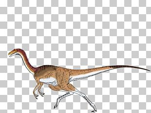 ARK: Survival Evolved Gallimimus Velociraptor Tyrannosaurus Dilophosaurus PNG