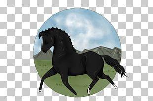 Stallion Mustang Rein Mare Halter PNG