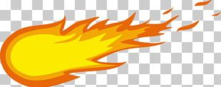 Fireball Cinnamon Whisky PNG