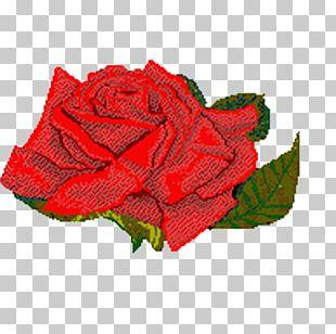 Rose Animation Flower PNG