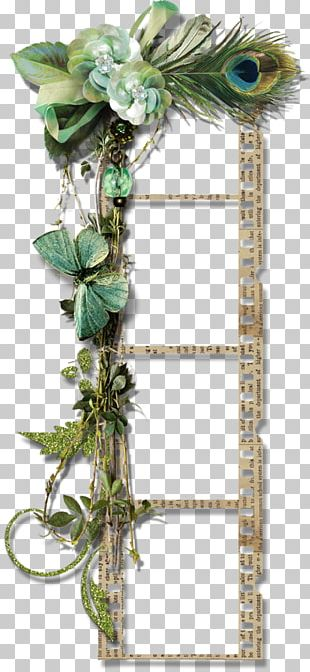 Frames Photography Floral Design PNG
