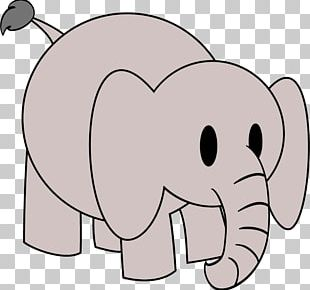 Elephant Drawing Circus PNG