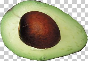 Fruit Salad Avocado Salad PNG