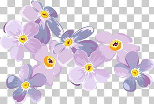 Petal Flower Floral Design Scorpion Grasses Plant PNG