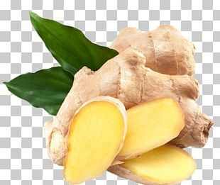 Ginger Seed Vegetable Plant Bonsai PNG