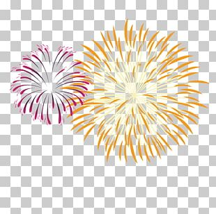 Fireworks Pyrotechnics PNG