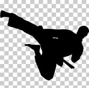 Flying Kick Martial Arts Karate Taekwondo PNG