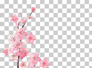 Watercolor Painting Flower PNG