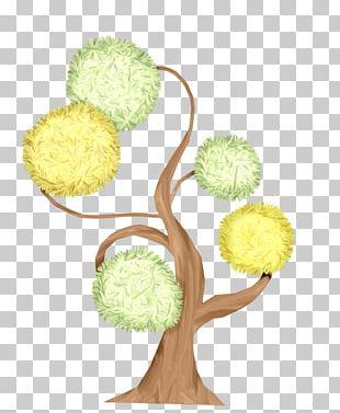 Tree Shrub Pine PNG