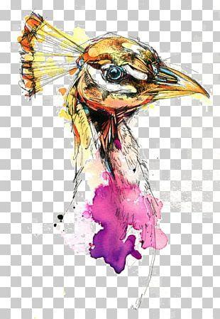 Bird Watercolor Painting Drawing Visual Arts PNG