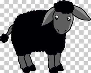 Black Sheep Goat Coloring Book Child PNG