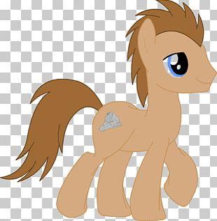 Horse Cat Mammal Pony Dog PNG
