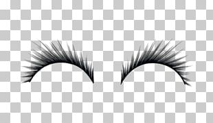 Eyelashes PNG
