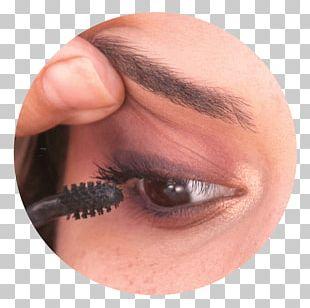 Eyelash Extensions Eye Shadow Eye Liner Lip Liner PNG