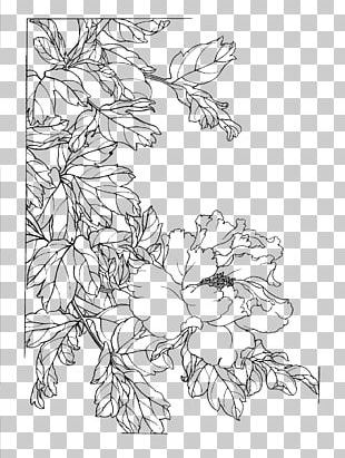 Gongbi Chinese Painting Flower Sketch PNG