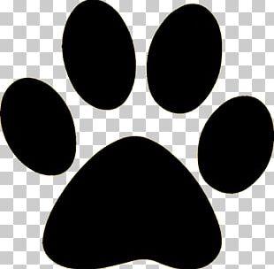 Dog Paw PNG