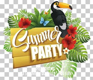 Party Flyer Summer Poster PNG