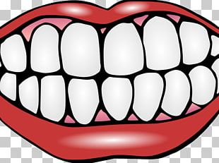 Human Tooth Dentistry Tooth Whitening PNG