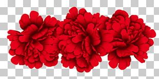 Red Moutan Peony PNG