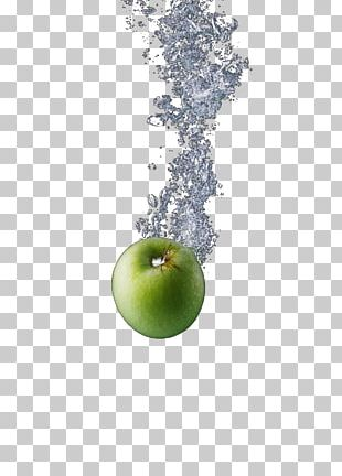 Green Fruit PNG
