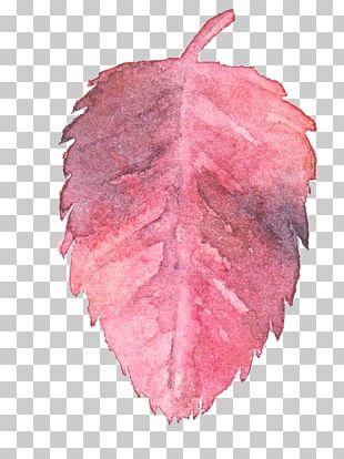 Transparent Watercolor Watercolor: Flowers Watercolor Painting Leaf PNG