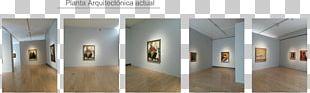 Museografia Art Exhibition Art Museum PNG