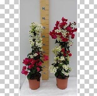 Flowerpot Floral Design Bougainvillea Shrub PNG