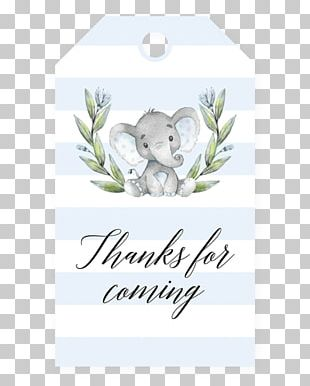 Wedding Invitation Baby Shower Infant Party Child PNG