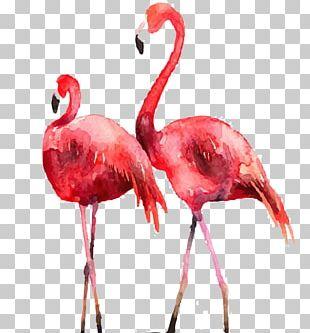 Flamingo Poster Printmaking Illustration PNG