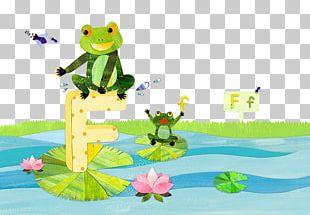 Frog Cartoon Drawing Illustration PNG